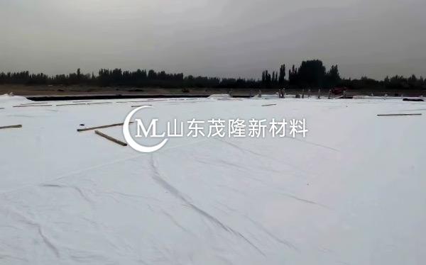 《中国石化库车商储库工程》土工膜、土工布施工  第5张