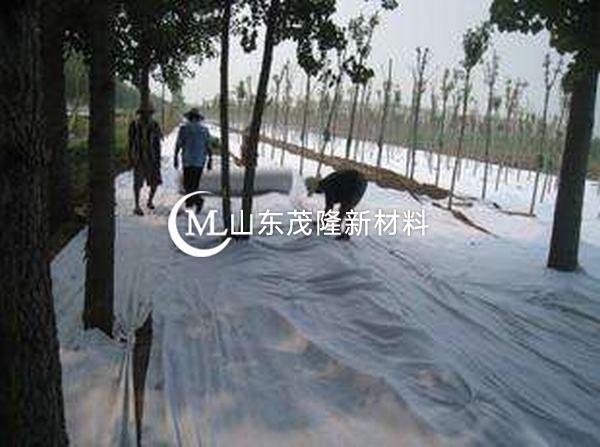反滤机制下土工布孔隙结构变化研究