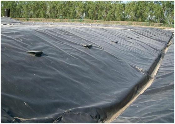 土工膜+土工布成保填埋场渗漏的首要任务  第1张