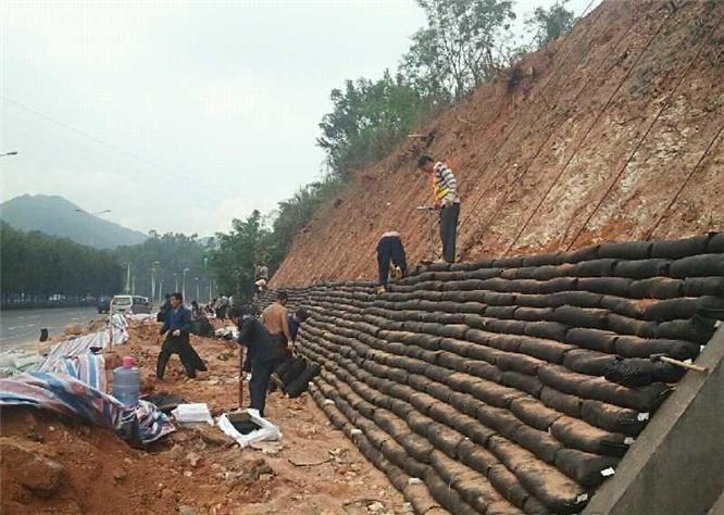 非织造土工布在环境绿化中起着十分重要的作用